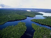 9º dia - Manaus - Amazon Ecopark Lodge